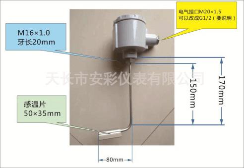 电伴热专用热电阻WZPK-136S